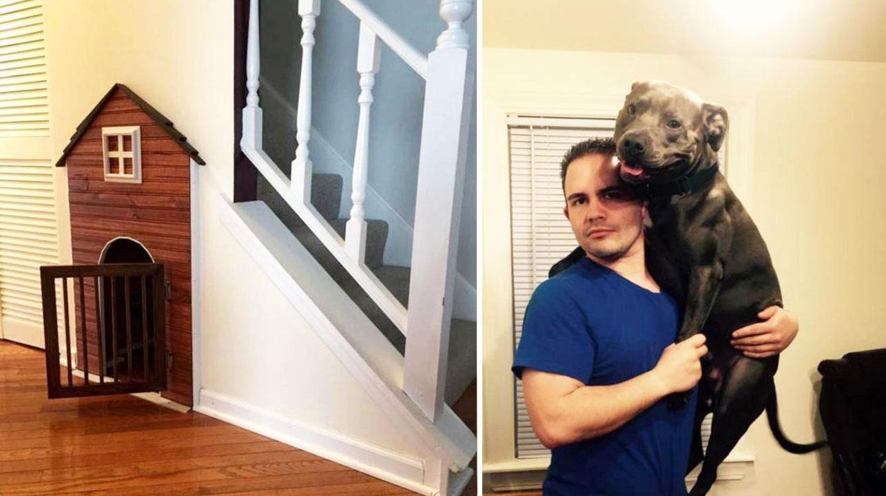 A este perrito lo quieren tanto que le hicieron su propio cuarto bajo la escalera